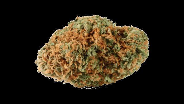 Bestes Weed kaufen